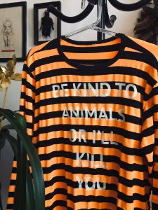 camiseta manga longa listrada be kind to animals