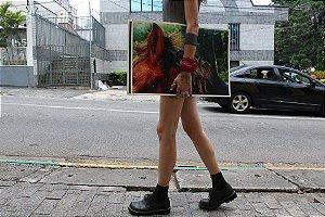 fotografia impressão fine art - natalie zart - cavalo
