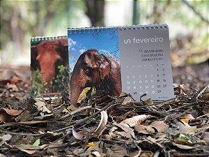 calendário Santuário dos Elefantes 2020