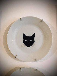 prato gato preto adote