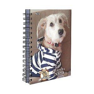 Agenda AAAC - Cachorro