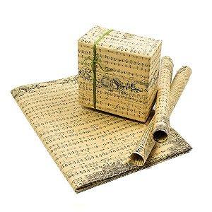 Papel Partitura Musical Decorativo - 70x50 cm - 5 Folhas