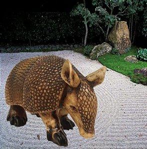 Escultura Tatu Mulita - Ambientes Exteriores