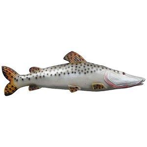 Peixe Pintado de Parede