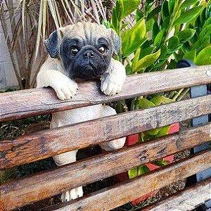 Escultura Pug Cute