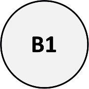 B01 - Pin