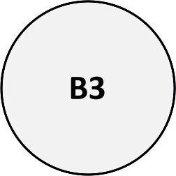 B03 - Pin