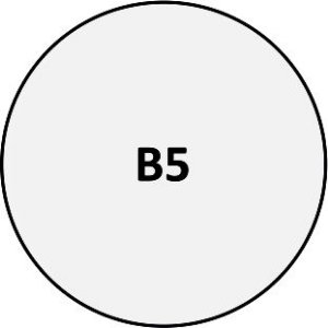 B05 - Pin