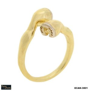 anel pata de cavalo banho 10 milésimos de ouro 18k