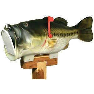 caixa de correio peixe big bass grande