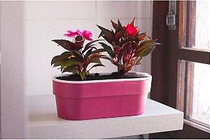 Hortinha Autoirrigavel Vaso de Planta - Linha Plantar Ou