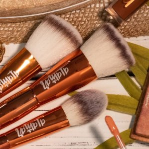 Alamar Cosmetics Complexion Brush Trio