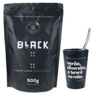 KIT COMPLETO TERERÉ + BOMBA INOX CLÁSSICA 19CM + BLACK ERVA 500G