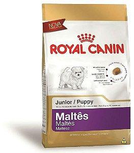 Ração Royal Canin Para Cães Filhotes  da Raça Maltes