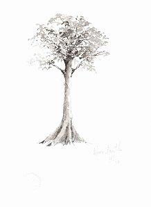 NATURE 14