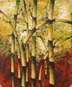 Tela Bambuzal 120x100cm