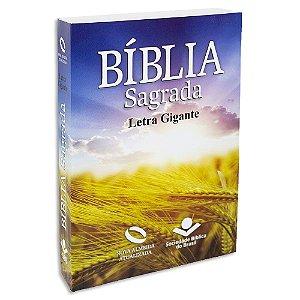 Bíblia Letra Gigante NAA