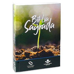Bíblia para Evangelismo NAA Kit com 12