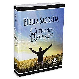 Bíblia NTLH Celebrando a Recuperação