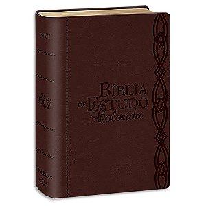 Bíblia de Estudo Colorida NVI Letra Grande Vinho