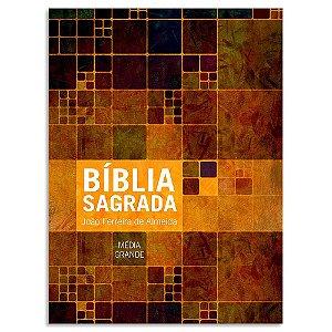 Bíblia João Ferreira de Almeida Letra Grande RC Ilustrada