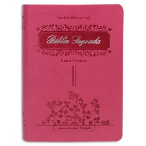 Bíblia Sagrada Letra Grande Pequena Pink