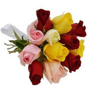 Buquê 12 Rosas Coloridas Friendship