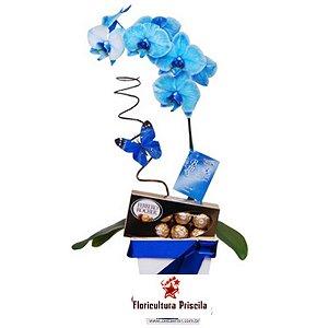 Orquídea Azul com Ferrero Rocher - Luar
