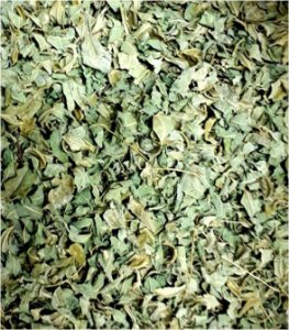 Moringa Oleifera Desidratada Em Folhas