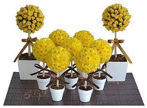 Kit Topiária Amarelo Marrom