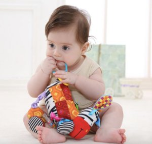 Brinquedo para Bebê - Zebra use Toys