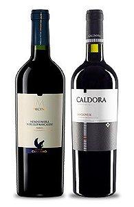 Confraria de Aniversário Winestore: Especial Itália com 15% de desconto