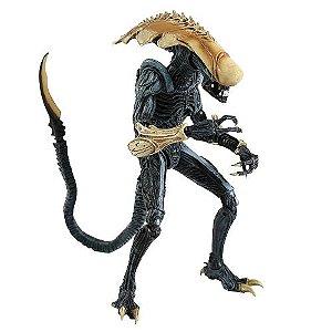 Action Figure Alien Vs Predador Chrysalis Alien - Neca