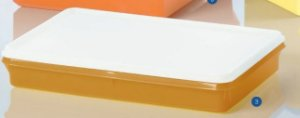 Tupperware Refri Box Laranja Tampa Branca 1,5 Litro
