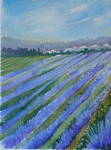 Pintura Original Em Aquarela - Campos De Lavanda-Toscana 28x20 cm - Tela/Quadro Para Decoração Da Sua Casa