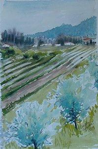 Pintura Original Em Aquarela Campos da Toscana III 26x17cm - Tela/Quadro Para Decoração Da Sua Casa