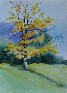 Pintura Original Em Aquarela Paisagem Outonal 37x27cm - Tela/Quadro Para Decoração Da Sua Casa