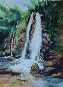 Pintura Original Em Aquarela Cascata Em Goiás 37x27cm - Tela/Quadro Para Decoração Da Sua Casa