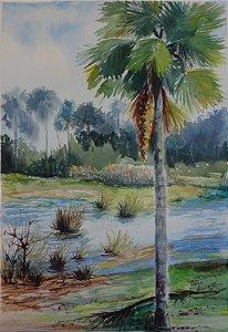 Pintura Original Em Aquarela Buriti No Laguinho Inspiração 49x33cm - Tela/Quadro Para Decoração Da Sua Casa
