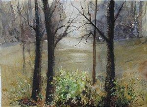 Pintura Original Em Aquarela  Bosque-Luzes Da Tarde 36x25cm - Tela/Quadro Para Decoração Da Sua Casa