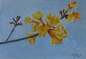 Pintura Original Em Aquarela Flor do Ipê Amarelo 27x19cm - Tela/Quadro Para Decoração Da Sua Casa