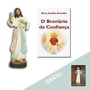 Kit Divina Misericórdia 1