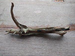 Tronco aroeira natural 27cm com x 16 alt x 4 Prof