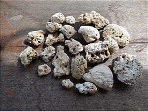 Kit Pedra Coral com 20 Pçs 1,240 kg