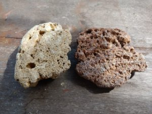 Pedra Coral Morto Kit 2 Unidades 0,573Kg
