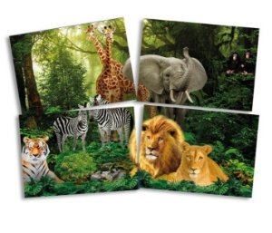 Painel Decorativo- Mundo animal