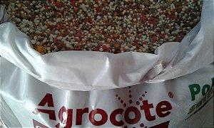 Agrocote / Agroblen 14 11 1 BALANCED – Liberação lenta até 6 meses – pote 250 Gramas (Osmocote) + Micros