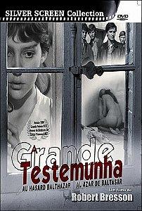 A GRANDE TESTEMUNHA