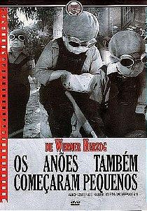 OS ANÕES TAMBÉM COMEÇARAM PEQUENOS