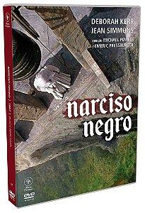 NARCISO NEGRO  - ENTREGA PREVISTA PARA A PARTIR DE 15/08/2019